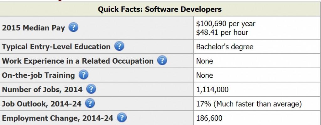 software_developer